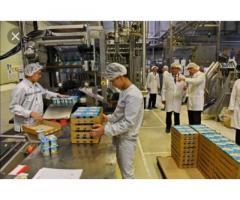 Бельгiя. на фабрику по упаковцi дитячого харчування м. Blankenberge. З/п 3200 €/мес