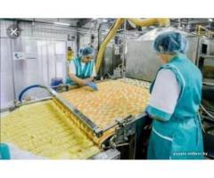 Германия. Упаковка чипсов на фабрике г. Braunshweig. З/по от 2100 €/мес