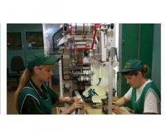 Фабрика по упаковке чай, кофе г.Vlezenbeek. З/п от 3200 €/мес