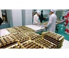 Фабрика шоколадная Дании г. Schleswig. З/п от 3100 €/мес