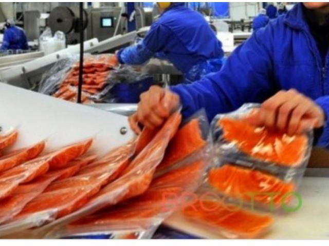 Норвегия Рыбзавод 5100 €/мес
