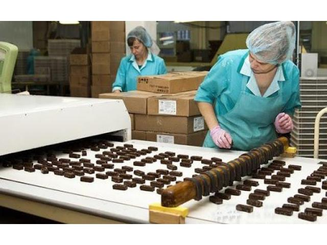 Бельгiя. упаковка шоколаду . З/п 3200- 4600 €/мic